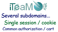 Subdomains single session (cookie)